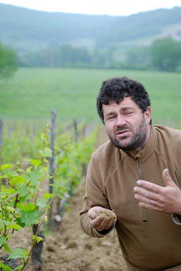 Ökowinzer Nicolas Maillet - Burgund
